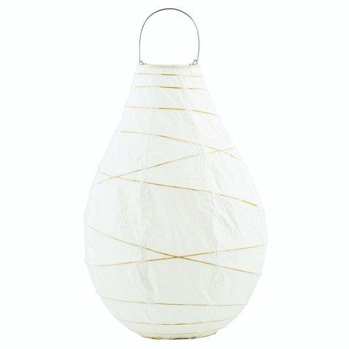 Lantern Eli