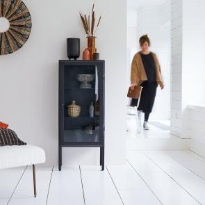 Lison Metal Glazed Cabinet 120